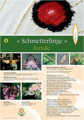 Informationstafel zu Schmetterlingen auf dem Kräuterweg - Wandern auf den Gesundheitswegen Weißenbach im Ahrntal