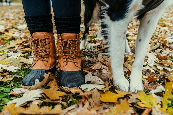 La médiation canine est un outil efficace pour gagner en confiance en soi et ainsi oser s'affirmer efficacement.