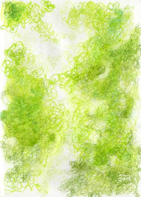 dazzling green  (2018.8)