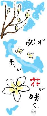 【Magnolia】-2011.3