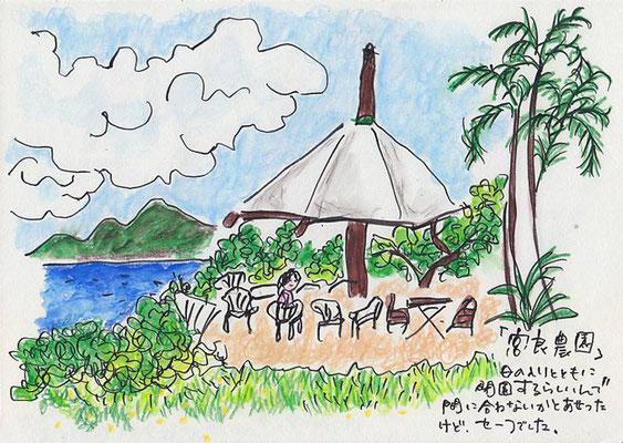 【 宮良農園 - 石垣島 】Miyara farm (07.7)