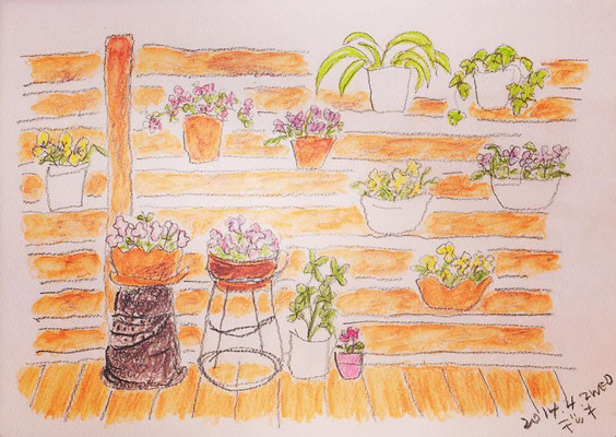 my mother's small garden (2014.4.2WED)