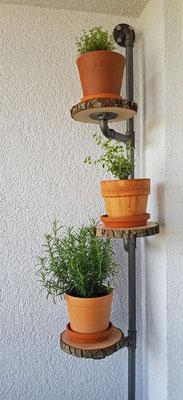 Kräuter auf Baumscheibe mit Stahlrohr und Fittings.   (c) T. Altmann