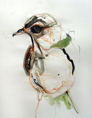 """""""Vogel 2"""", 70 x 50 cm, Mischtechnik auf Papier, 2015"""