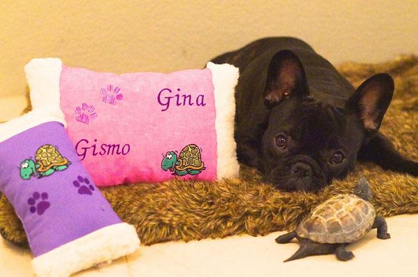 Gismo & Gina