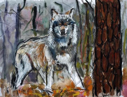 Wolf 50x65 cm Mischtechnik / Papier verk/ sold