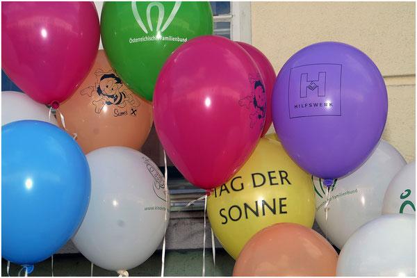 Schleifer Rudolf, Eggenburg, Rang 67 - Bild 1212, 19 Punkte ( 7 6 6)