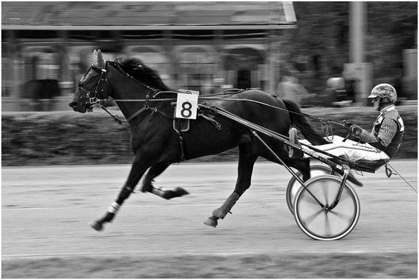 Tradinik Fritz, Hollabrunn, Rang 49 - Bild 1309, 24 Punkte (8 8 8 )