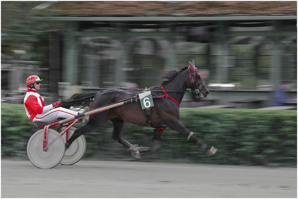 Tradinik Friedrich, Hollabrunn, Rang 15 - Bild 258, 27 Punkte ( 9 10 8)