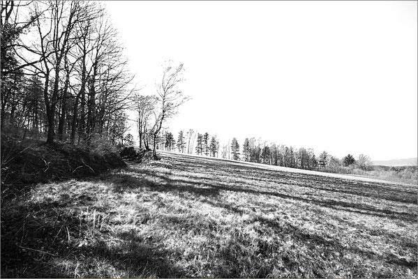 Haslinger Franz, Stockerau, Rang 59 - Bild 1061, 14 Punkte ( 4 3 7)