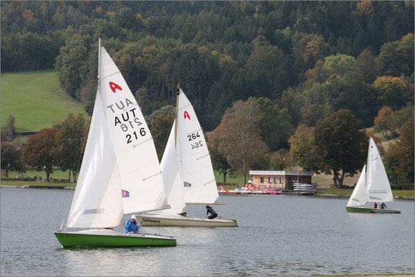 Wild Robert, Hollabrunn, Rang 66 - Bild 1254, 12 Punkte (4 4  4)