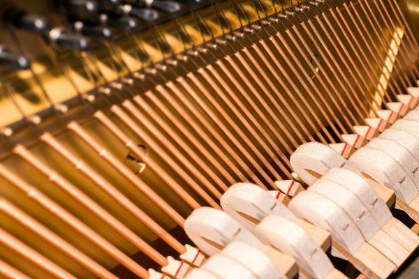 Klavierunterricht Bad Segeberg