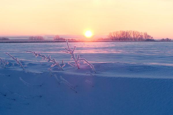 Sonnenaufgang über dem Schnee