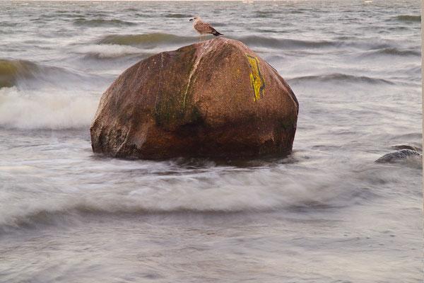 Steine am Strand 7