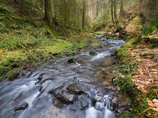 Silberbach im Silberbachtal