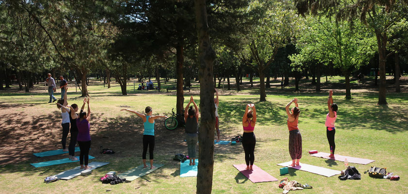 Yoga In Nature In Mexico City Urban Amazona