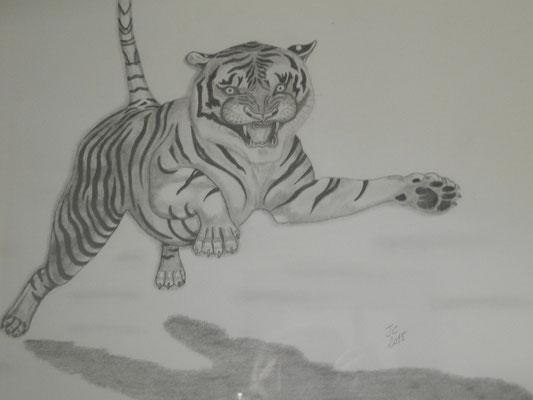 le Tigre bondissant
