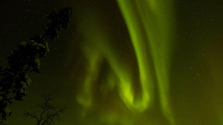 starkes Nordlicht welches sich über den gesamten Himmel zieht. Von Horizont zu Horizont. . .