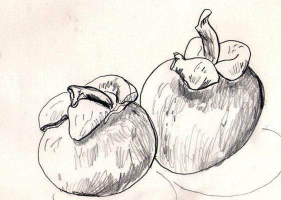マンゴスチン みんなは柿だと言う