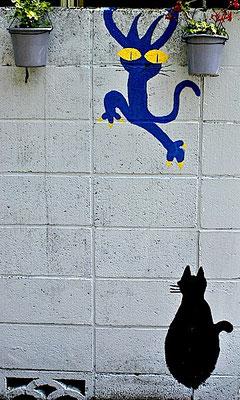 路傍の猫さわぎ
