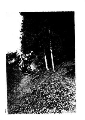 2. Klasse im Wald 1927
