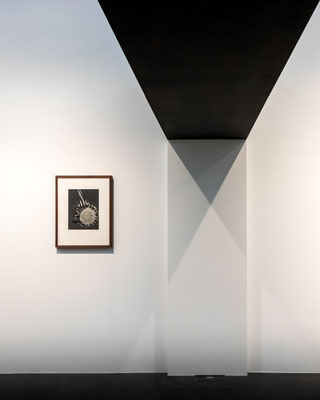 Marika Großer Schatten 03 2019