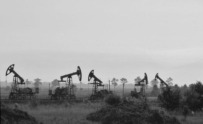 RenateBeutel Ölfeld 2013