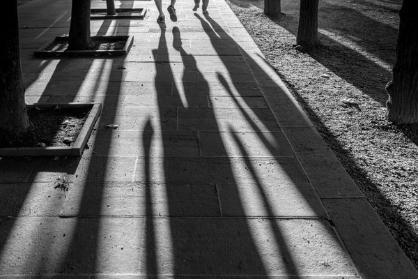 Marika Großer Lange Schatten 2019