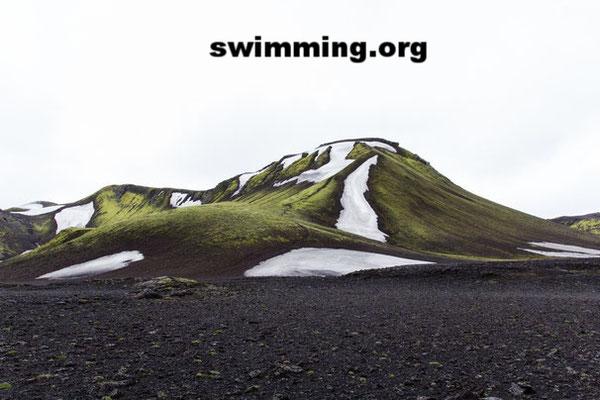 Swimming TV