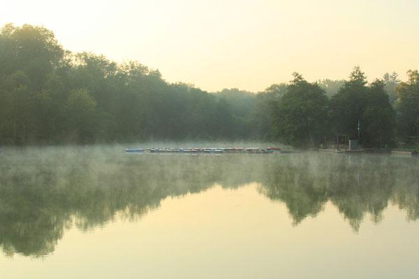 Zunehmend herbstliche Stimmung am Teich