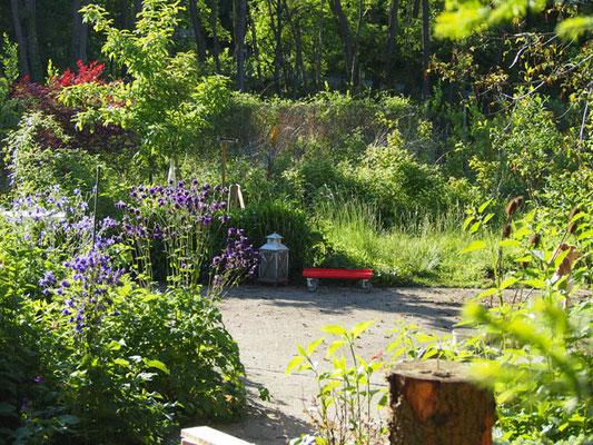 Der Grünblick seitlich, weil geradeaus in 4 Meter entfernung ist eine grüne Wand (Jasmin-Busch).