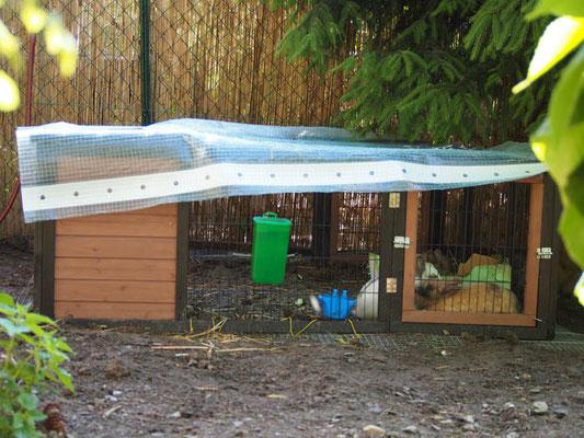 Damit die Tierchen nicht nass werden, wird eine Frühbeetfolie aufgelegt. Das schützt ganzjährig gegen Regen/Schnee