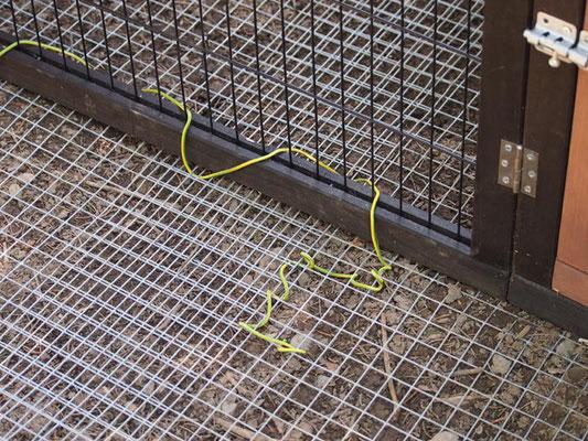 Am Boden unten ein punktgeschweisstes Gitter einziehen und mit dem Stall festbinden.