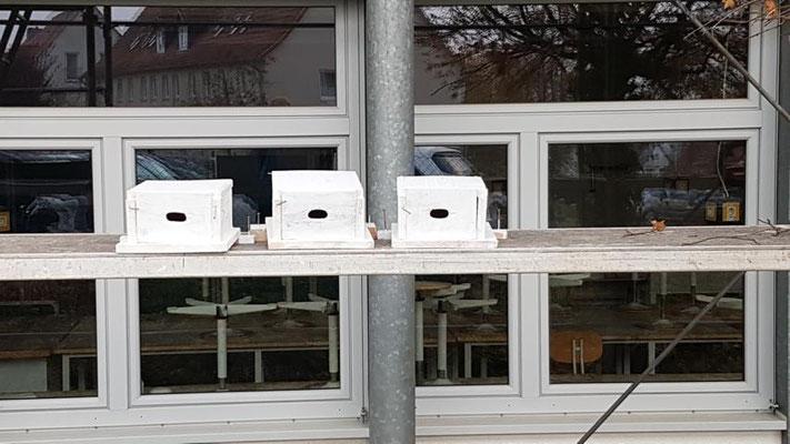 Mauerseglerkästen für die Burgwaldschule