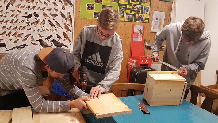 Bau von Mauerseglerkästen für den Schulhof in Zusammenarbeit mit dem NABU Frankenberg