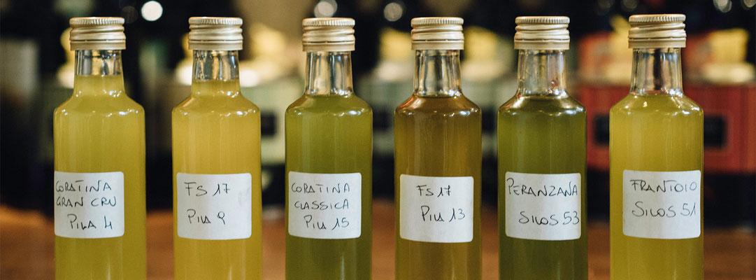 Ein renommiertes Olivenöl-Kompetenzzentrum in Grünstadt: ZAIT Ltd.
