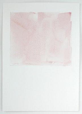Tulpen 2 | 2004, Eitempera/Bütten, 70 x 50 cm