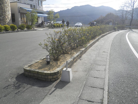 萩の世界遺産 秋吉台 秋吉台試験施工 階段