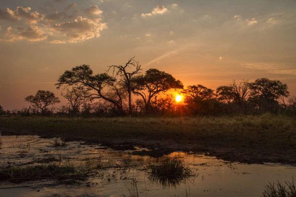 "Matthias Gößmann: FlussSafari  auf dem Kwandofluss mit ""Mashi River Safaris""; Namibia"