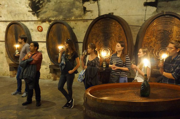 Learn German in Würzburg, cultural programme, guided cellar tour and wine tasting, group photo intenational students