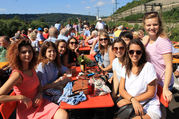 German Language Summer Course, Learn German in Würzburg, cultural programme, day trip, boat trip on the Main river to Veitshöchheim, international students with vineyeards in the background