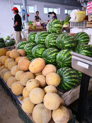 leckerste Melonen