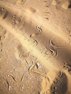 Schlangenlinien
