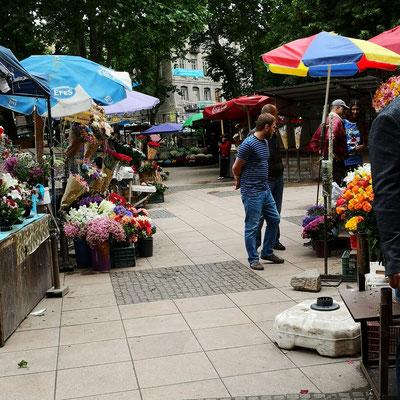 Auf dem AltenBlumenmarkt