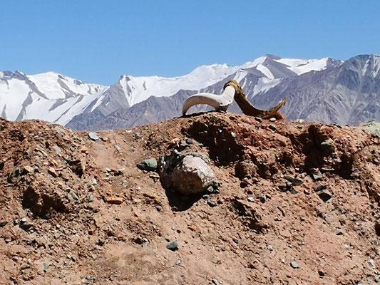 Tadschikische Grenze
