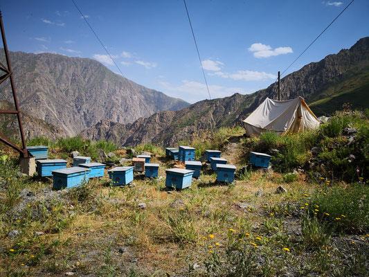 immer wieder sehen wir Bienenkörbe