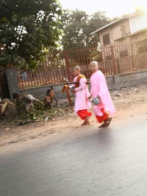 Junge Nonnen sammeln für das Abendessen
