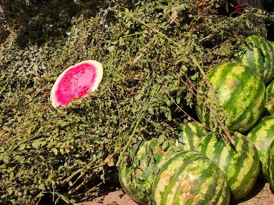 Die region Chiva gilt als leckerste Melonengegend