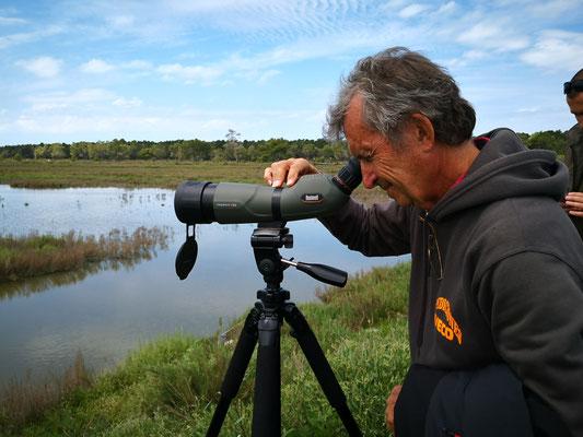 und auch Uli sieht die Flamingos  und Pelikanbrutstellen