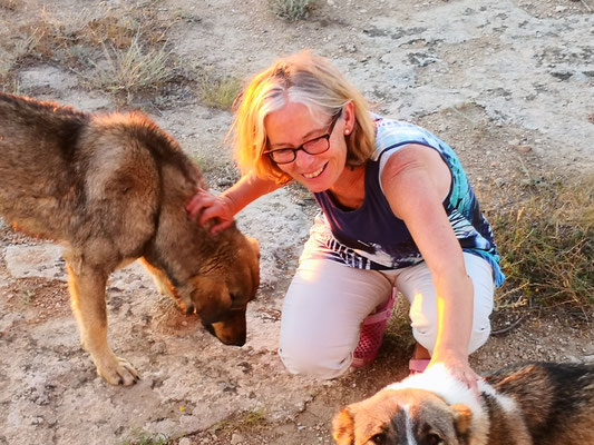 und Hundebegleitung
